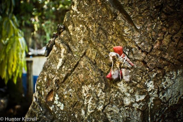 Voodoo dolls on tree